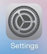 the iphone settings icon