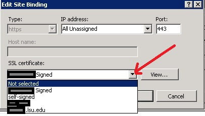 Edit Site Binding dialog box