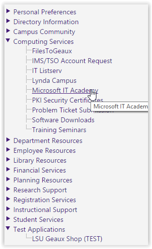 screenshot of myLSU: Microsoft IT Academy