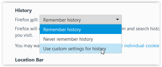 Privacy tab: Remember history selected with Use custom settings for history highlighted.