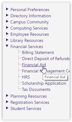 highlighted Financial Aid option