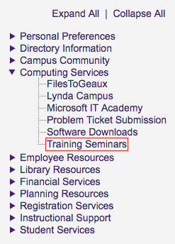 myLSU Training Seminars link