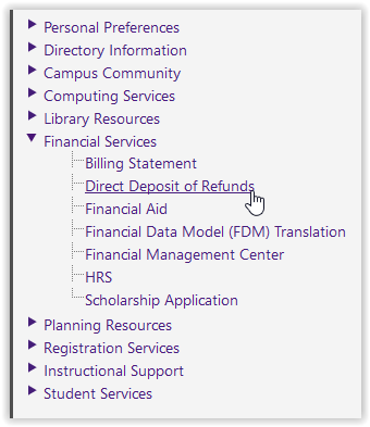 Financial services/direct deposit of refunds options in myLSU