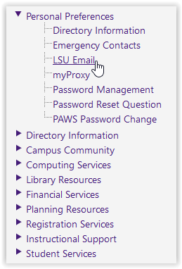 personal preferences/LSU e-mail options in myLSU