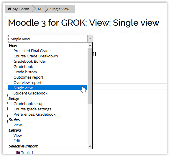 Single view option in moodle gradebook
