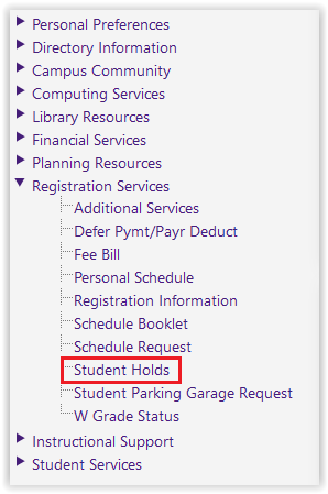Student holds under the Registration Services drop down menu
