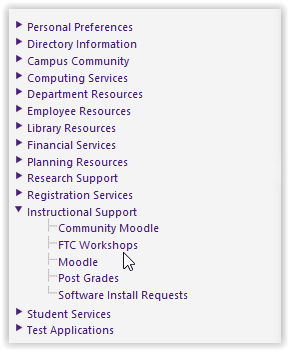 FTC Workshops under Instructional Support