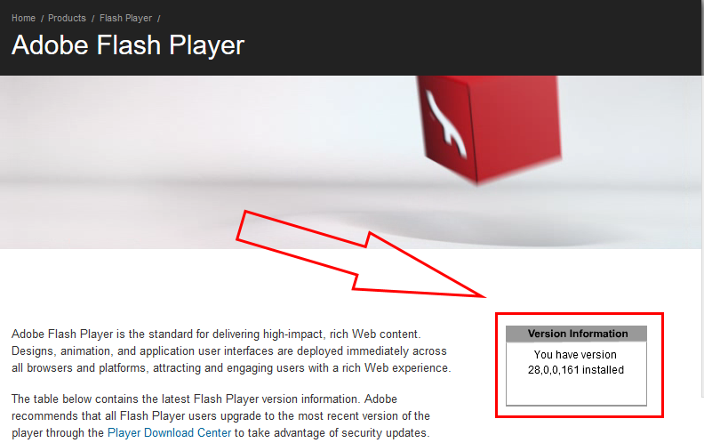 Flash player box showing the current version