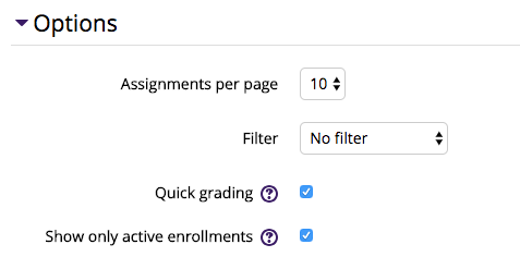 Assignment Options section