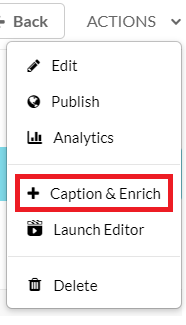 caption and enrich selection in actions menu